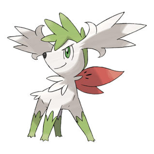 Shaymin Cielo Artwork